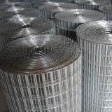 Galvanizzato dopo la rete metallica saldata saldatura