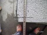 G654 paste de Natuurlijke Tegel van het Graniet van de Sesam Zwarte met Gehamerde Struik aan