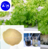 Chengdu Aohe Aminoácido Orgânicos Adubo em pó