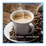 Caffè della migliore parte naturale di 100% & tè di dimagramento verdi di Hearbal