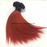 Virgin 머리 Ombre 브라질 색깔 10 인치 Ot1b 빨간 똑바른
