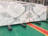 De Witte Marmeren Plakken van Italië voor Tegel