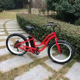 눈 뚱뚱한 타이어 48V 500W 전기 자전거