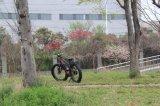 2017 4.0 Entwurfs-MITTLERE Laufwerk-Flaschen-Batterie-elektrisches Fahrrad zerteilt des Zoll-fette Gummireifen-500W 48V neue Fahrrad-Bewegungsinstallationssätze