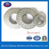 Dacromet/acier inoxydable Dent côté unique de la foudre les rondelles (ENF25511)