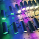 ángulo de haz de la luz 15/30/60/90 de la pared de 6wx2 IP65 LED