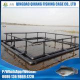 Квадратная клетка быть фермером рыб плавая в озеро мор реки