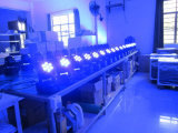 7PCS*10W 4 in 1 mini illuminazione mobile DJ della fase dell'indicatore luminoso LED della lavata del LED Party l'illuminazione di cerimonia nuziale della discoteca