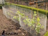 [سيلين] غلفن [شكن وير كلوث] لأنّ يحمي أشجار