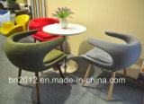 Cadeira de venda quente do lazer do vidro de fibra (EC-027)