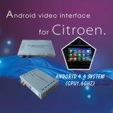 GPS Citroen C6 영상 공용영역을%s 인조 인간 항법 상자
