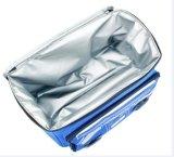 Изолированный мешок для напольный перемещать, водоустойчивый пляж охладителя диктора Bluetooth мешка охладителя пикника