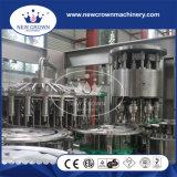 Gute Qualitätsheißer Verkauf mit Cer-reinem Wasser-Produktionszweig