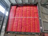 중국 최고 토마토 페이스트 제조자