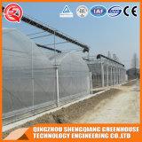 Landwirtschafts-Stahlrahmen-Aluminiumprofil-Plastikgewächshaus