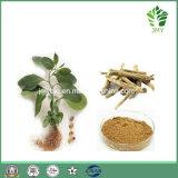 Extrait Withanolides1%-5%, alcaloïdes de fond d'Ashwagandha 1% ~2%