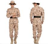 위장 육군 전투 제복 Acu