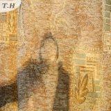 Chenille ricamato tessuto della tenda (FTH31081)