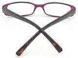 R17052 Leitura de moda de fotograma completo de vidro, Grão Pequeno óculos de leitura