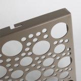 Decoratieve Metaal Geperforeerde Bladen/het Geperforeerde Geperforeerde Metaal van het Metaal Netwerk voor Verkoop