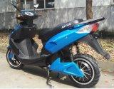 Manufactory Cuba motocicleta elétrica quente das vendas 1000With 1500With 2000W 72V20ah Ámérica do Sul de Panamá, México, Bolívia, Colômbia