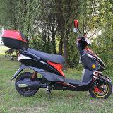 페달 60V 건전지를 가진 쿠바를 위한 전기 자전거 Tdr60k128