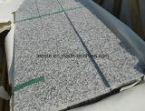 Дешевый свет - серый G623 гранит, камень плитки гранита вымощая