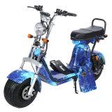 800W 1000W EEC COC Fat Tire Harley elektrische motorscooter