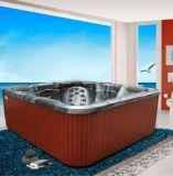 優雅な6人のバルボアジャクージの鉱泉の温水浴槽の屋外の渦
