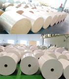 Papel revestido del PE para el tazón de fuente de los tallarines de Corea