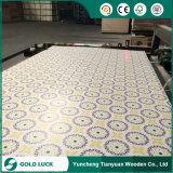 triplex van de Polyester van het Triplex Polyboard van 1220X2440mm het Document Bedekte