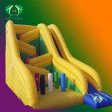 Faites glisser Inflatable