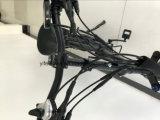 Pneu de roue de magnésium Fat 48V 500W grande puissance vélo électrique