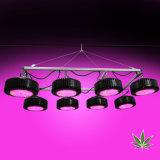 2000W reducir los costos de Siembra de Plantas Medicinales con par de Gases de Efecto de luz LED crecer