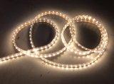 Indicatore luminoso bianco caldo esterno della corda di colore del LED con 2 anni di garanzia