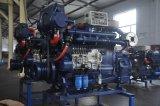 """A APC226 Série """"Ad Marine"""" Motor diesel marítimo"""