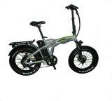 24inch Fat Style-Beach vélo électrique vélo de la plage 48V12ah Batterie au Lithium 500W du moteur sans balai