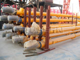 Lsy219* 9m Types off Screw Conveyer