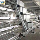 중국 가금 농장을%s 고명한 공장 상표 완전히 자동적인 장비 닭 새장