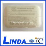 iPad 충전기 12W 5V 2.1A 고유를 위한 이동 전화 충전기