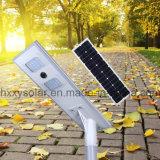 太陽電池パネル庭の照明のための統合されたLEDの街灯40W