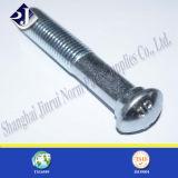 Ovale Stutzen-Schraube für Grooved Befestigung
