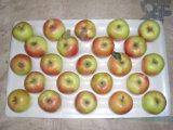 FUJI Apple Гала Apple