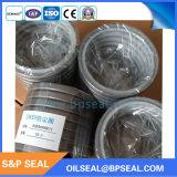 Guarnizione del pulitore della polvere dell'unità di elaborazione di alta qualità per il pistone e l'asse (80*94*8/11)