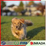 Hierba artificial de hierba del animal doméstico del perro del césped sintetizado del verde