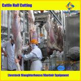 Macchinario Cattle Slaughter Equipment del mattatoio
