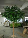 [هيغقوليتي] اصطناعيّة معمل & زهرات من [فيكس] شجرة [غ64065054]