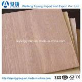 BB/CC Bintangor Álamo cara comercial básico para la decoración de madera contrachapada