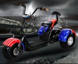 60V/20ahの電気移動性のスクーター