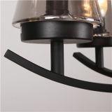 Горячий люстра подвесной светильник со стеклянными тени (SL2246-6)